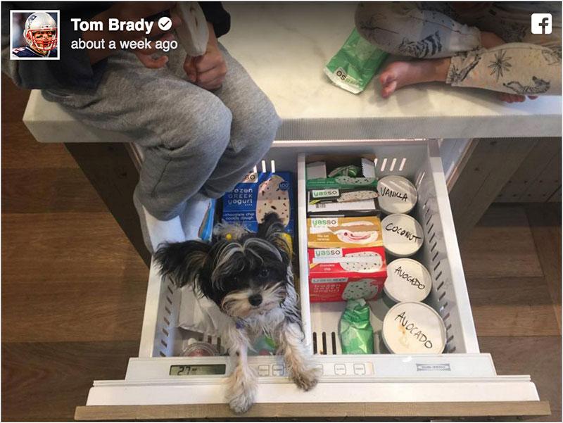 Yasso in Tom Brady's Freezer